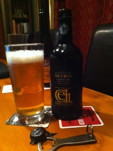 Celt Experience - Celt Silures